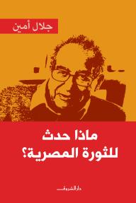 ماذا حدث للثورة المصرية؟