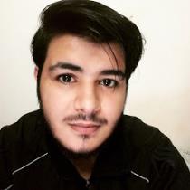 Walid Alsadi